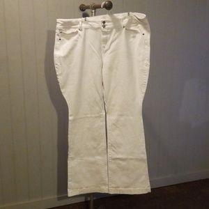 Torrid Flare Jeans Sz 24